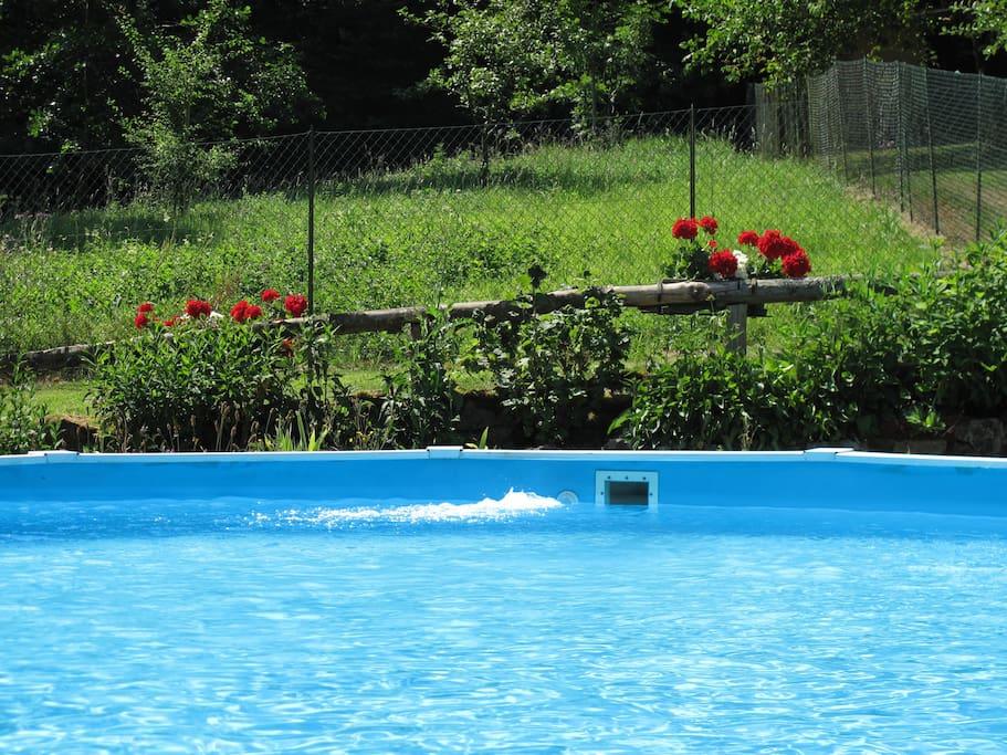 La piscine 7,60 x 4,60