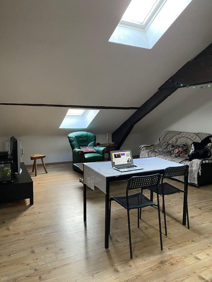 Appartement cosy Dijon