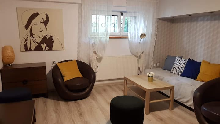 Spacious room close to the centre of Poznan
