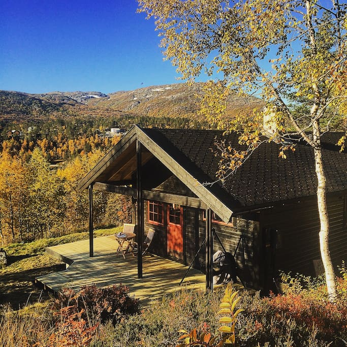 The cabin in the autumn season