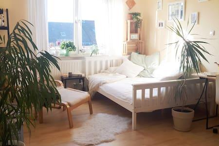 Gemütliches Zimmer! 800 m vom Hbf, in der Neustadt