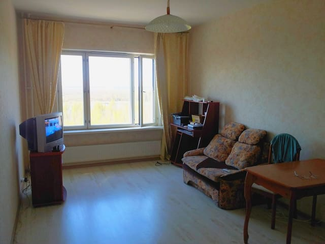 Sunny 2-rooms apartments at bay and forest. - Sankt-Peterburg - Apartment