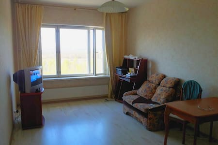 Sunny 2-rooms apartments at bay and forest. - Sankt-Peterburg - Appartement
