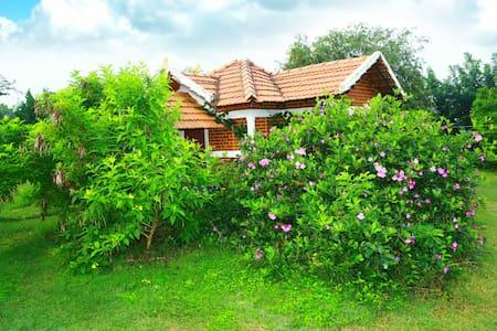 Chalets Resort, Masinagudi