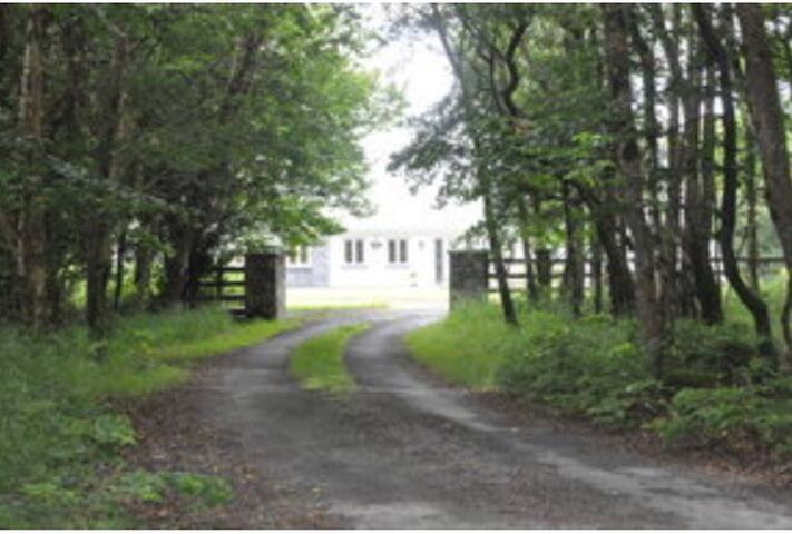 Beautiful lakeside home in secluded wooded area - Ballinrobe  - Σπίτι