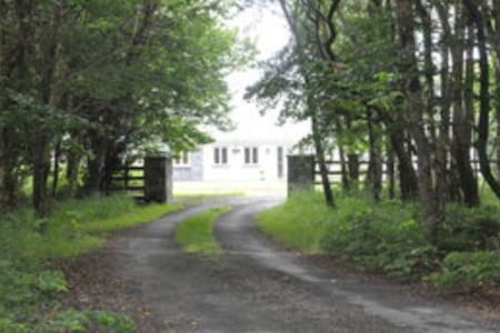 Beautiful lakeside home in secluded wooded area - Ballinrobe