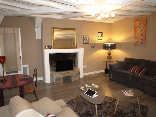 Grand studio plein cœur historique de Vannes - Vannes - Appartement