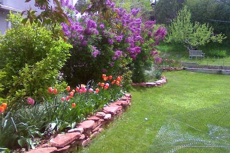 Cozy Gardens & Mountain Views 5 minutes from town. - Glenwood Springs - Dom
