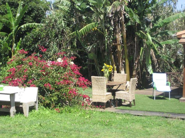 Cabana Papoila