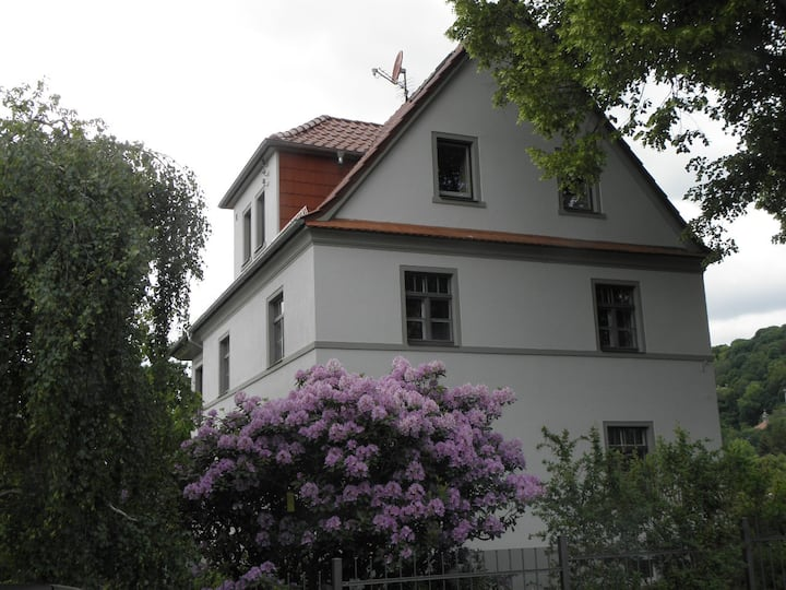Cosy Appartem. in Dresden/Radebeul