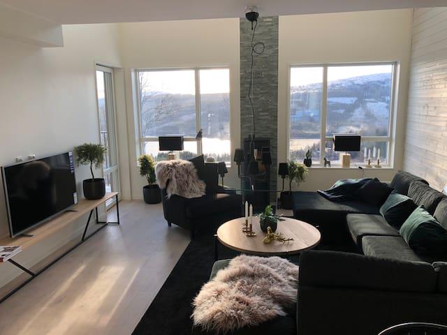 Exclusive ski in/ski out apartment Åre Sadeln