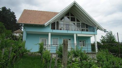 Vrijstaand huis met internet, zwembad  en airco