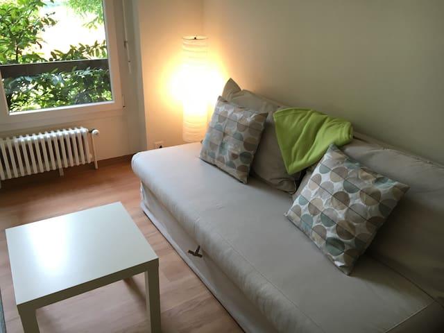Lumineux deux pièces à Sion - Sion - Apartment