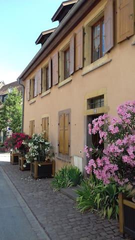 Chez Régine et Alfred - Rouffach - Apartment