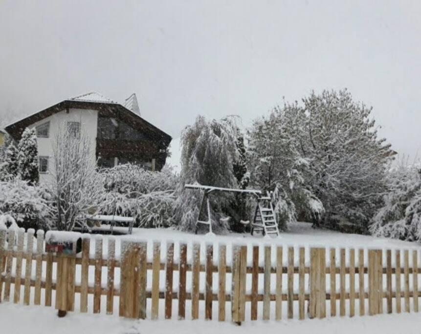 Wintertime ***