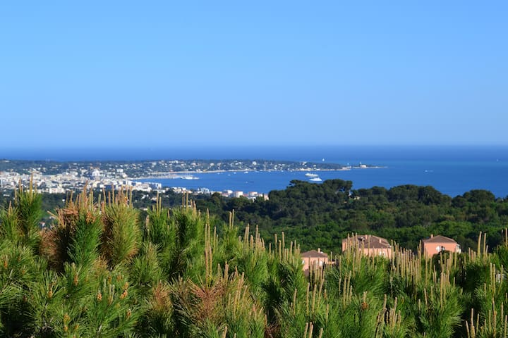 Appartement 80m2 vue panoramique Cap d'Antibes