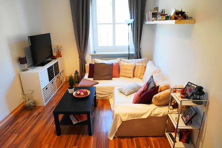 Charming Apartment: Around the corner of FC Bayern - Munic - Pis
