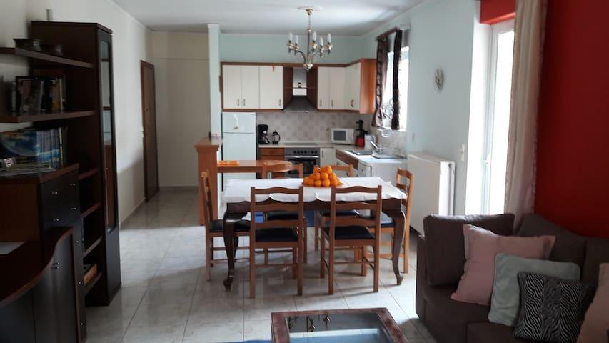 Extra 102m2 apartment in Nafplio!! - Navplion - Apartamento