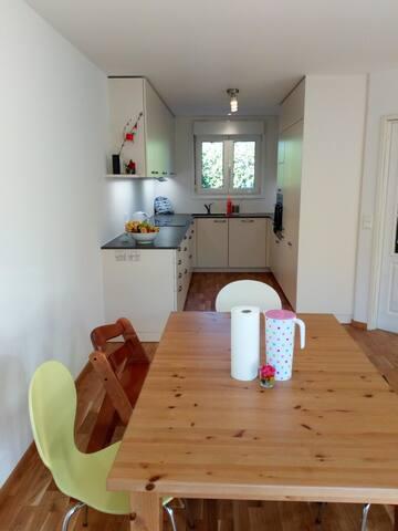 Family House in Geneva suburbs