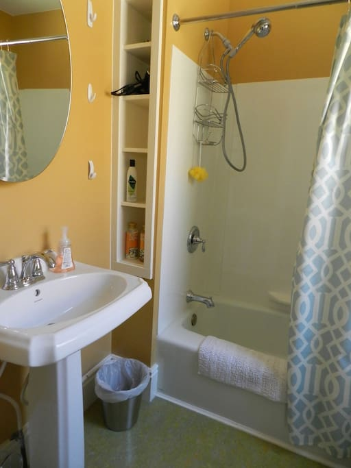 Attached private bathroom with shower, tub, sink, toilet, hair dryer, shampoo & body wash