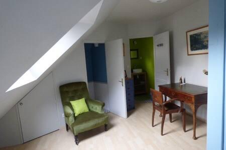 Chambre en centre ville - 图尔 - 独立屋