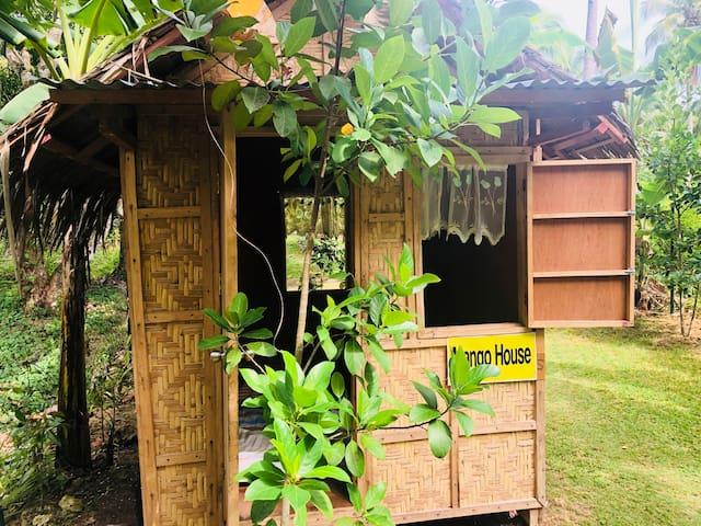 """Samal Island Cottage:  """"Mango House"""". WIFI"""