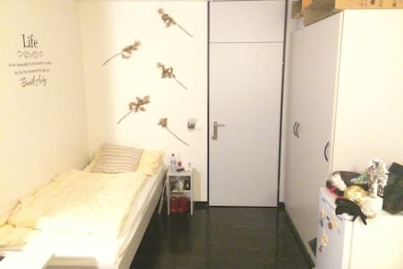 Room in Lucerne - Luzern