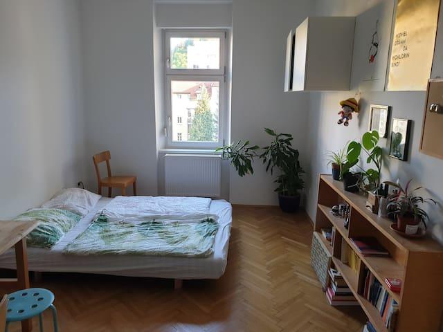 Beautiful quiet redone apartment