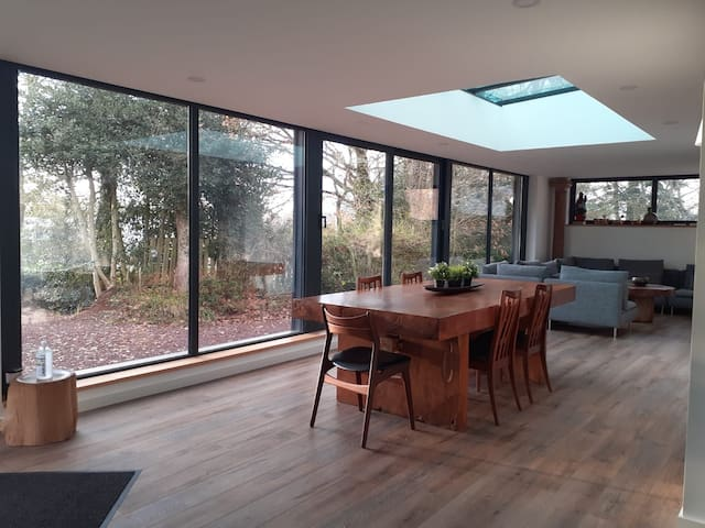 Nouveau Maison contemporaine forêt broceliande
