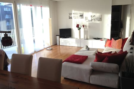 1 room with a double-bed - Wetzikon - 公寓