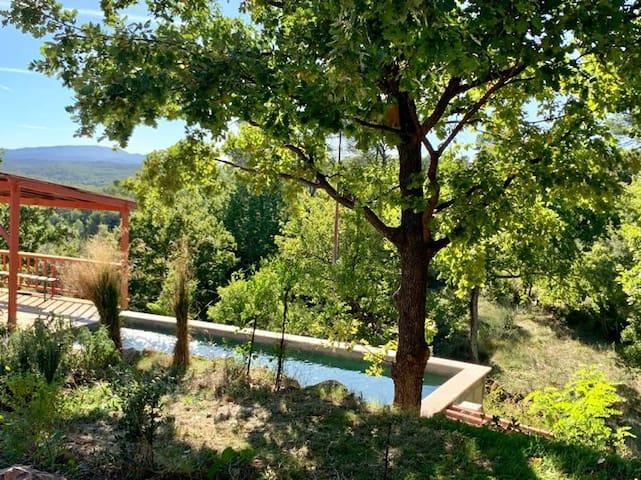 Chênes de Provence Séjour en famille ou entre amis