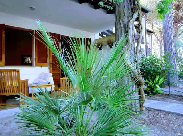 Cozy, quiet, double garden home for you!