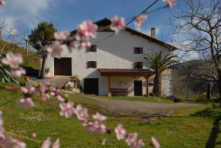 Traditional farmhouse  heart of the Basque Country