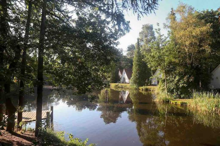 Chalet Vledder aan visvijver op camping Adelhof