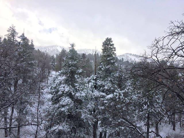 Tree Peek Lodge - Bear Mountain Is The Back Yard!
