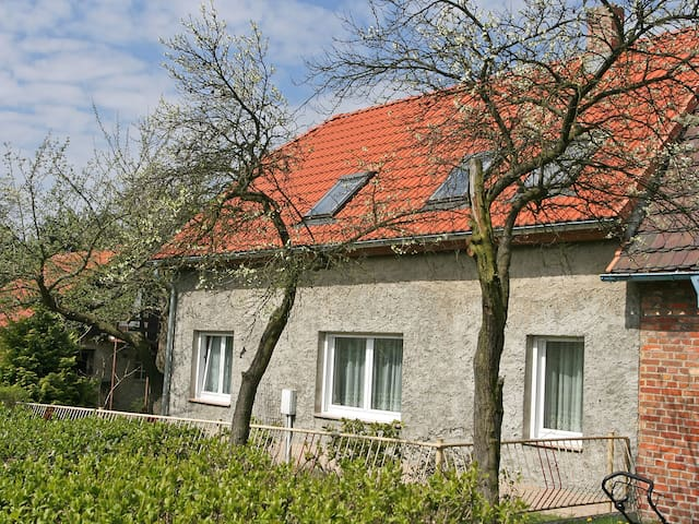 4-room semi-detached house 65 m² Reihenhaus Zerna in Bad Muskau