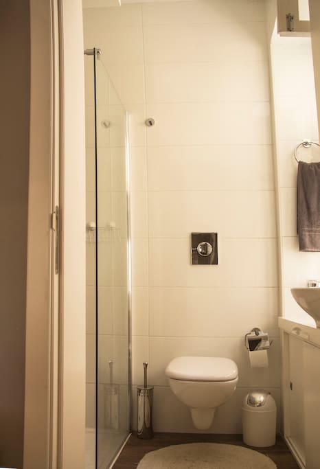 Bathroom is cosy but  well spaced-out. Great walk-in shower.