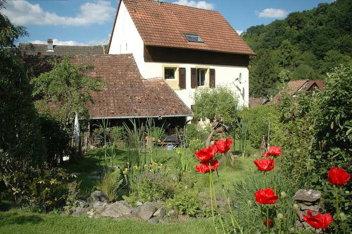 Appartement dans un ecrin de verdure - Eschbach-au-Val - Leilighet