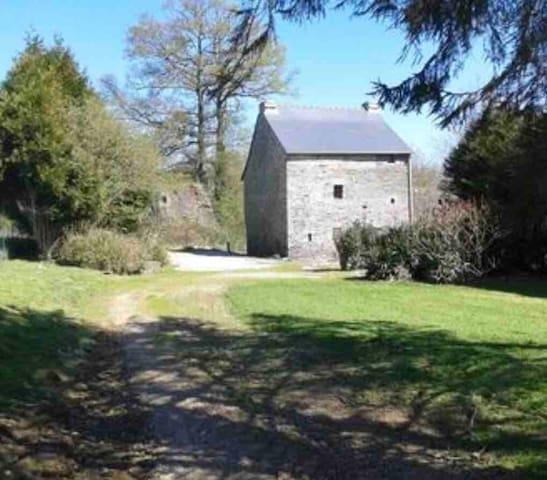 Old Quiet Gîte in Remote Location (pet friendly)