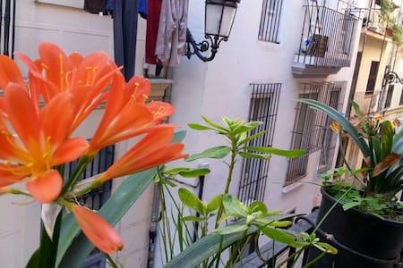 Habitación Valencia centro1 ciudad. - València - Bed & Breakfast