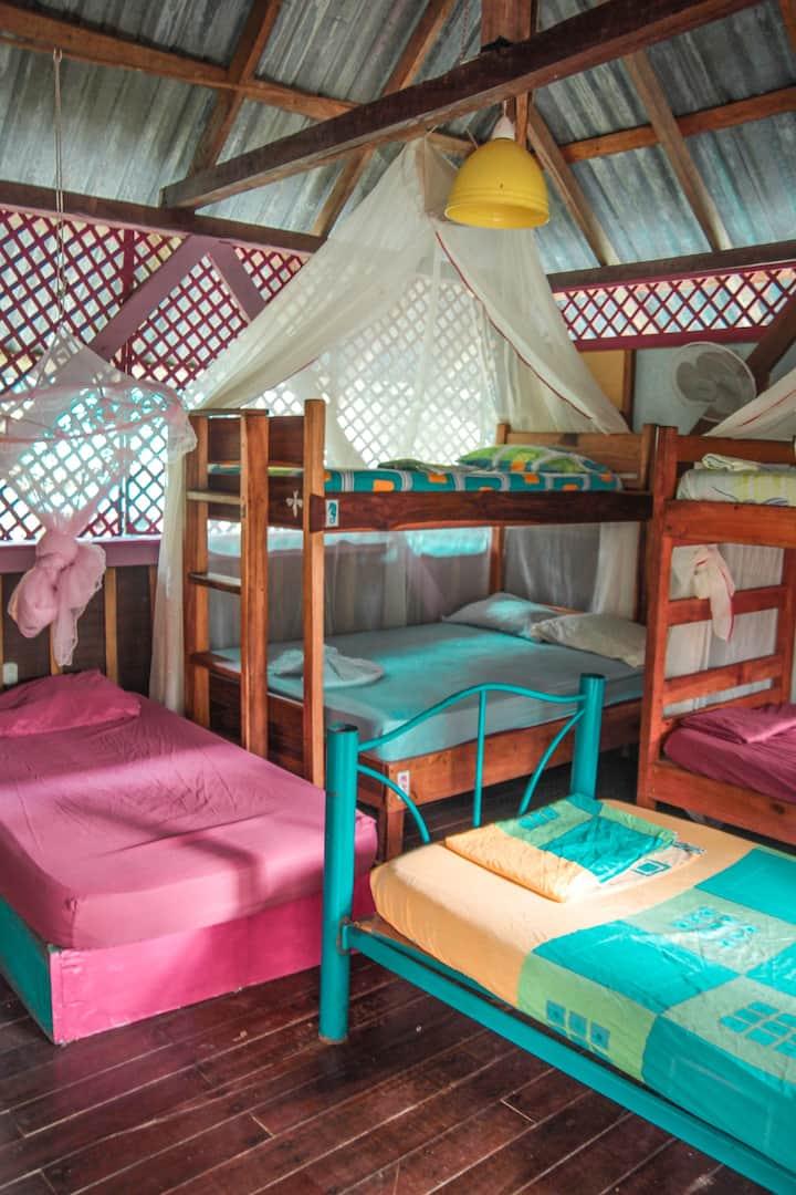 Walaba Dorm 1
