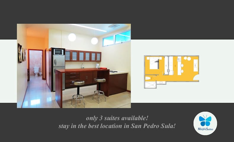 Executive-Suite. Fully furnished! - San Pedro Sula - Apartament