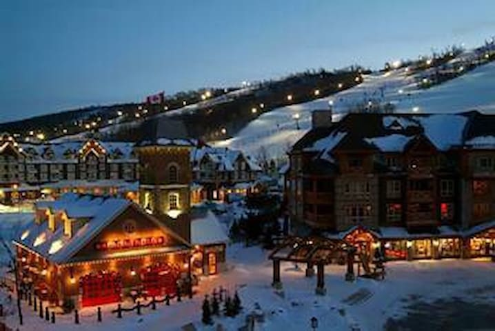 8 bedroom Chalet at Blue Mountain - The Blue Mountains - Chalet
