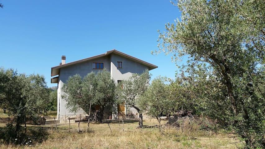 Relax tra gli ulivi - Trivento - Huis