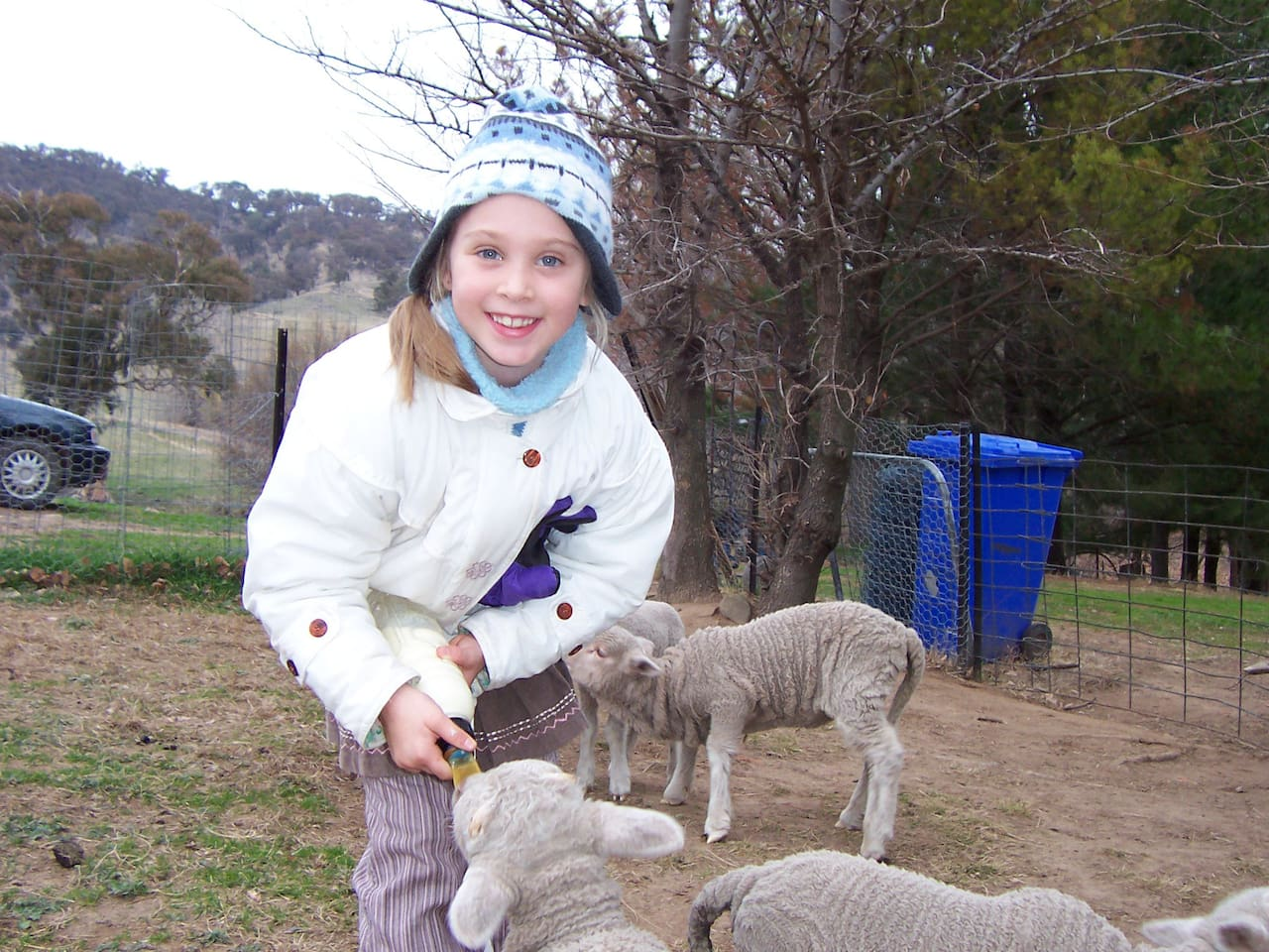 Feed the lambs in May, June & July