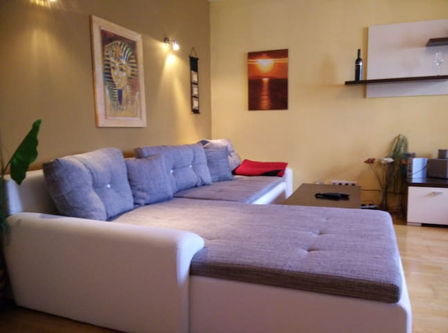 2 room apartment near Schönbrunn - Viena - Apartamento