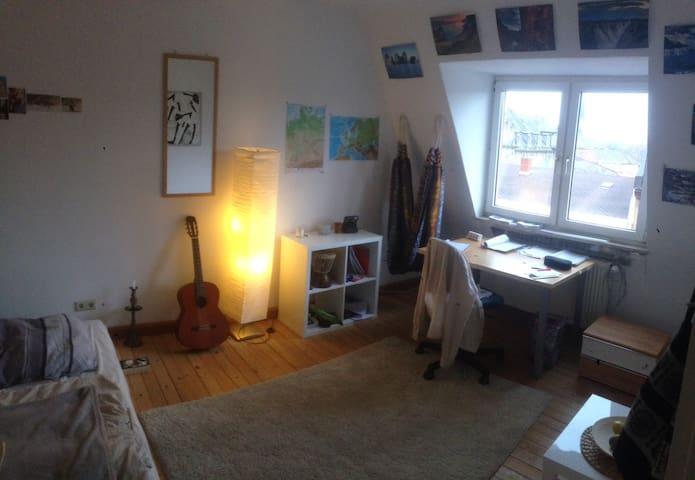 Comfortable room next to the city! - Mannheim - Appartamento