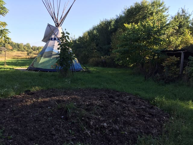 Colorful Tipi on Organic Farm - Columbiaville - Tiipii