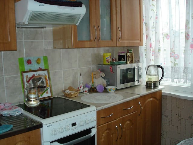 Nice Hostess Flat - Murmansk - Apartment