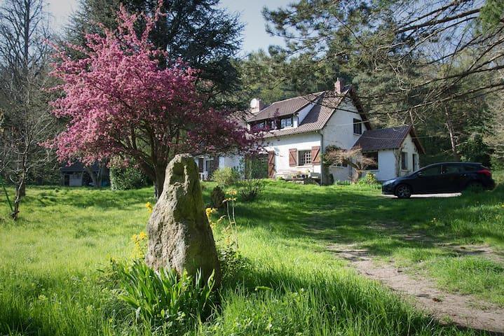 Maison en bord de forêt - Saint-Martin-de-Bréthencourt